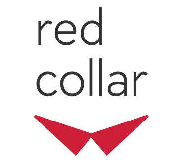 Исполнитель проекта по разработке сайта - Red Collar