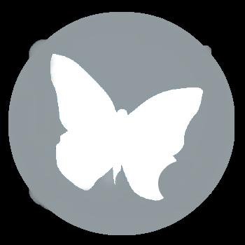 кнопка iUMI