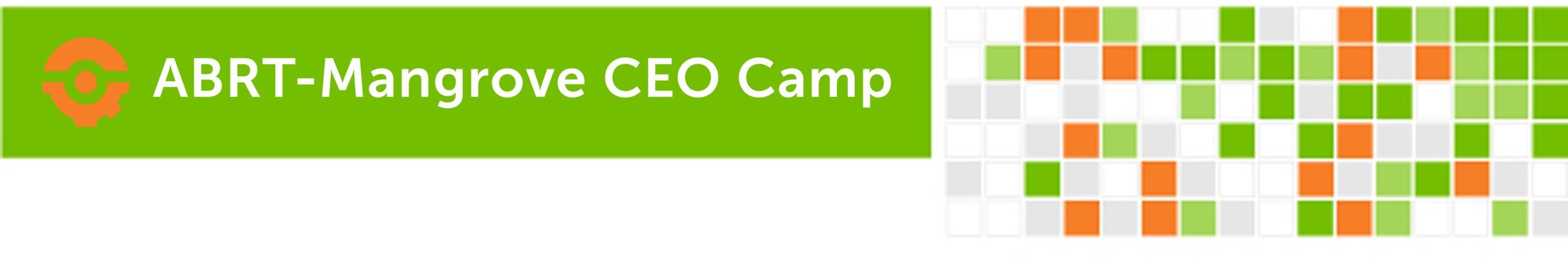 CEO Camp